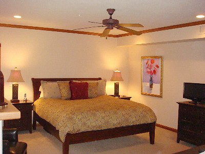 Master bedroom suite w/ king bed, & gas fireplace